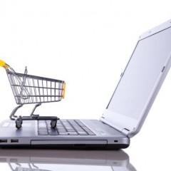Quel est le profil général des internautes qui achètent sur le net ?