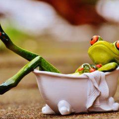 Comment bien choisir sa baignoire balnéothérapie ?